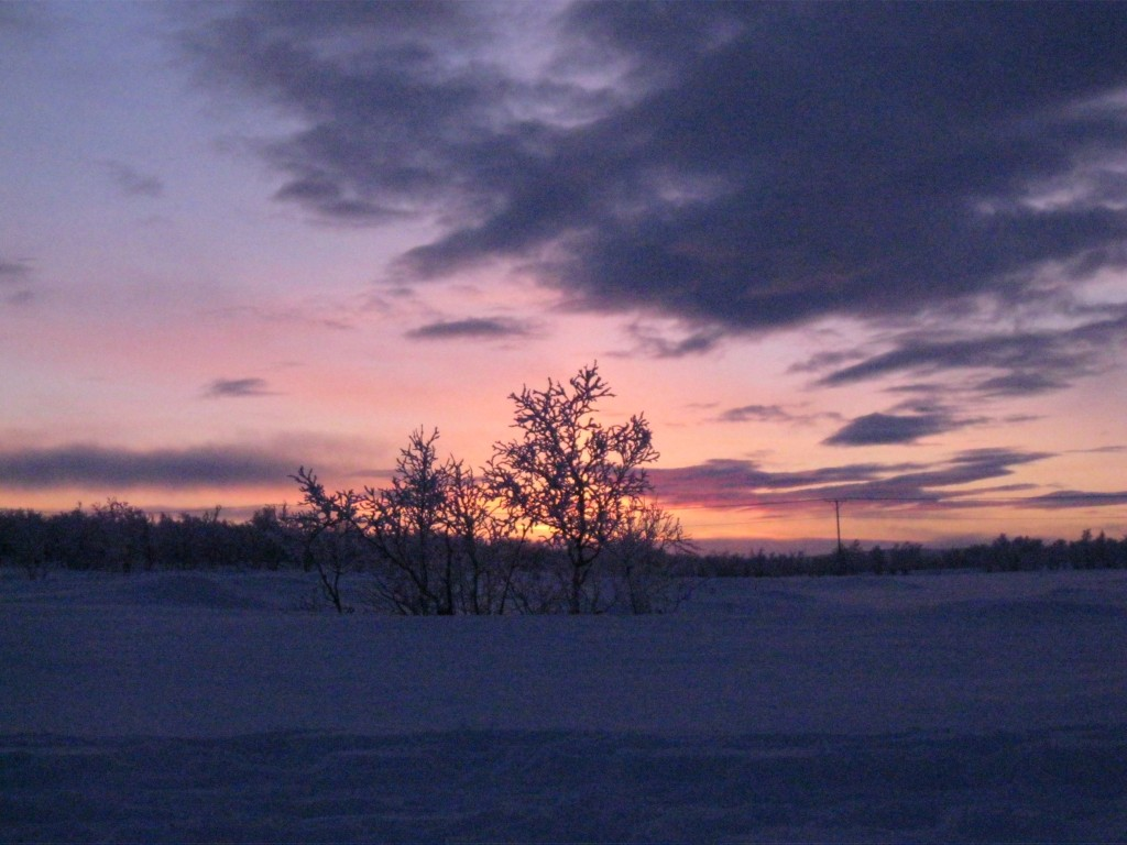 January sunset in Petsikko