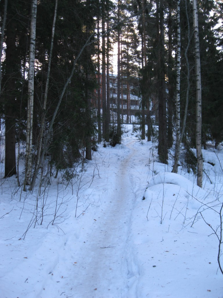 Path from dorm to trail